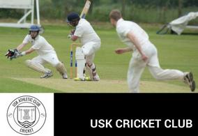 UAC SECTION Block Cricket